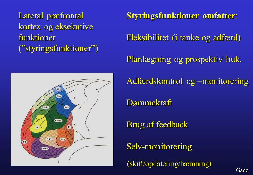 Styringsfunktioner omfatter: Fleksibilitet (i tanke og adfærd)