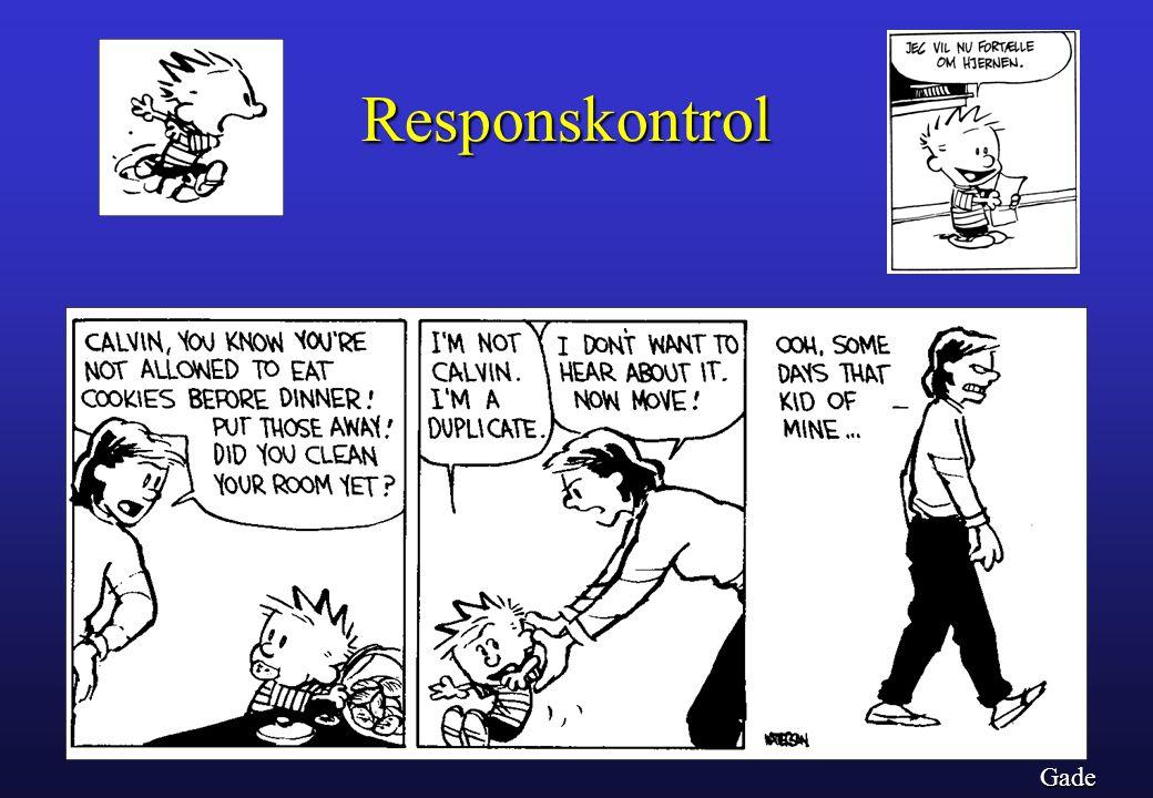 Responskontrol Gade