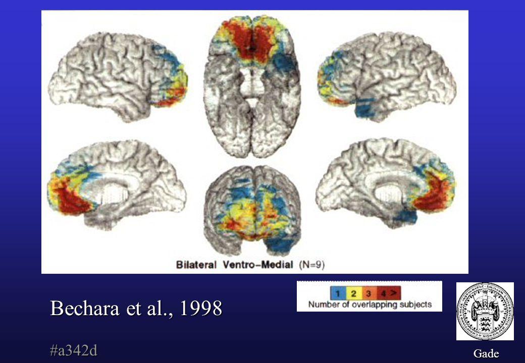 Bechara et al., 1998 #a342d Gade