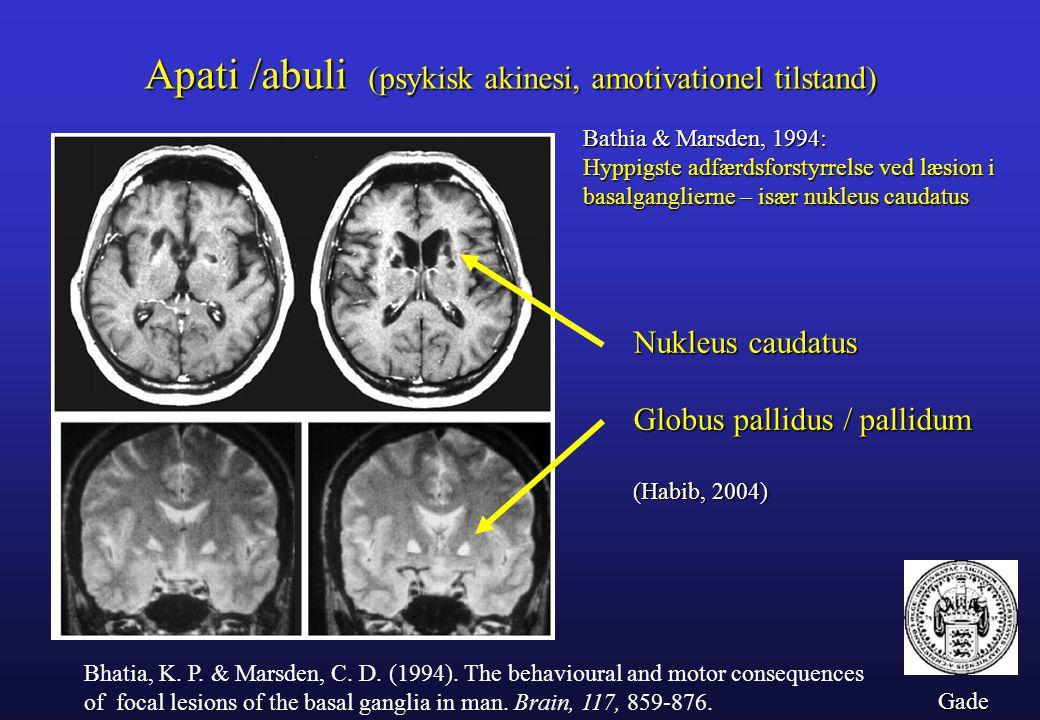 Apati /abuli (psykisk akinesi, amotivationel tilstand)