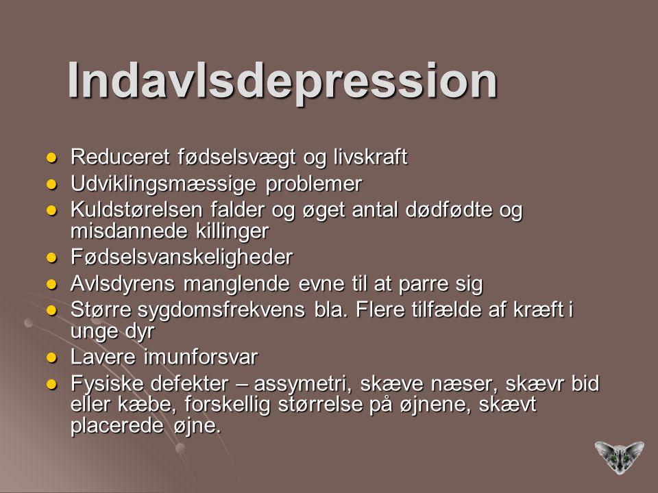 Indavlsdepression Reduceret fødselsvægt og livskraft