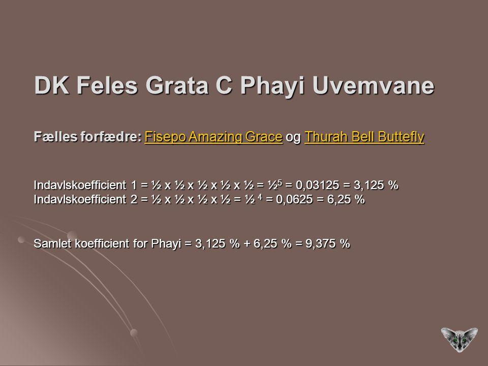 DK Feles Grata C Phayi Uvemvane Fælles forfædre: Fisepo Amazing Grace og Thurah Bell Buttefly Indavlskoefficient 1 = ½ x ½ x ½ x ½ x ½ = ½5 = 0,03125 = 3,125 % Indavlskoefficient 2 = ½ x ½ x ½ x ½ = ½ 4 = 0,0625 = 6,25 % Samlet koefficient for Phayi = 3,125 % + 6,25 % = 9,375 %