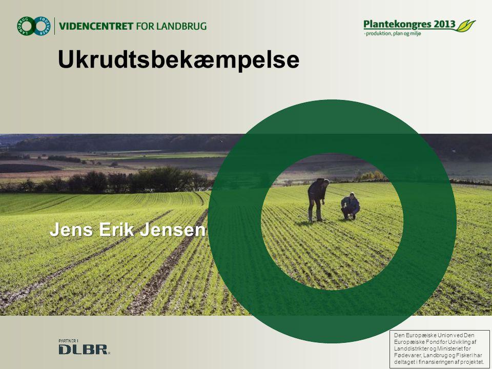 Ukrudtsbekæmpelse Jens Erik Jensen
