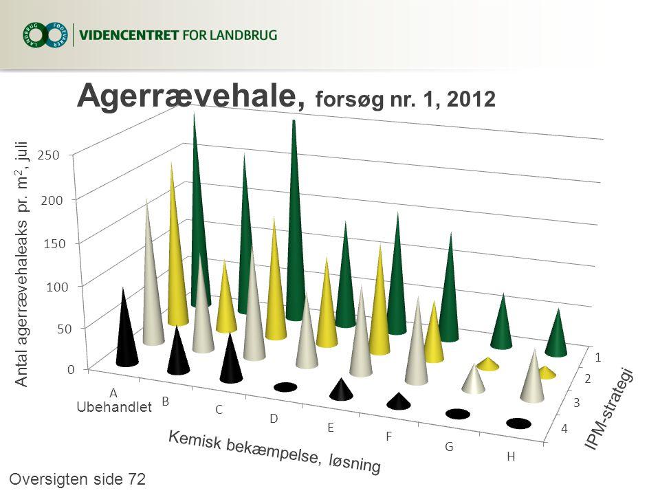 Agerrævehale, forsøg nr. 1, 2012
