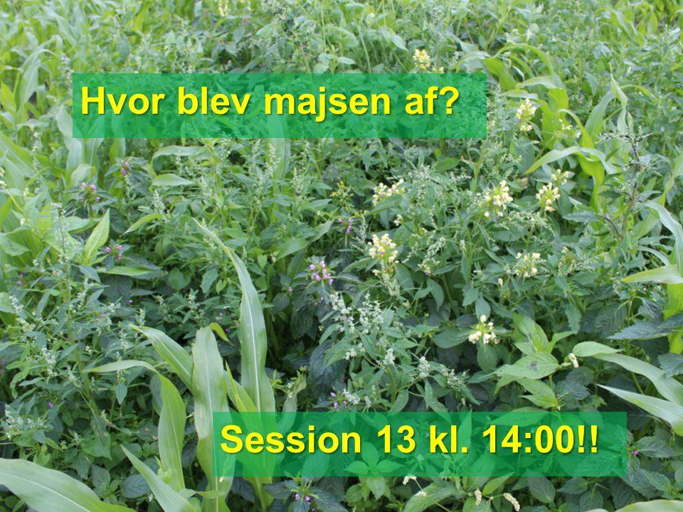 Hvor blev majsen af Session 13 kl. 14:00!!