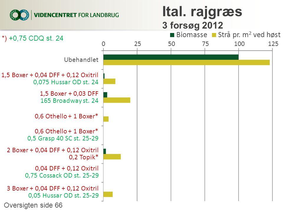 Ital. rajgræs 3 forsøg 2012 Biomasse Strå pr. m2 ved høst