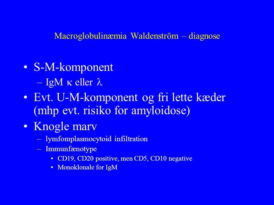 Macroglobulinæmia Waldenström – diagnose