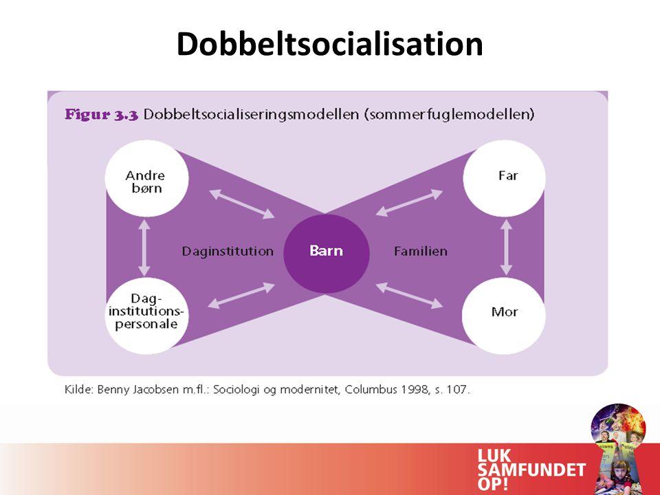 Dobbeltsocialisation