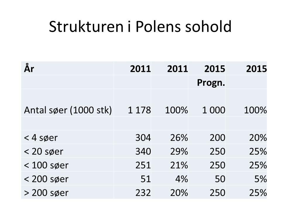 Strukturen i Polens sohold