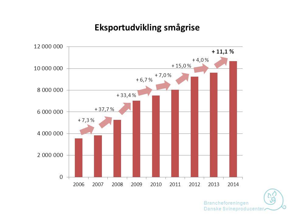 Eksportudvikling smågrise