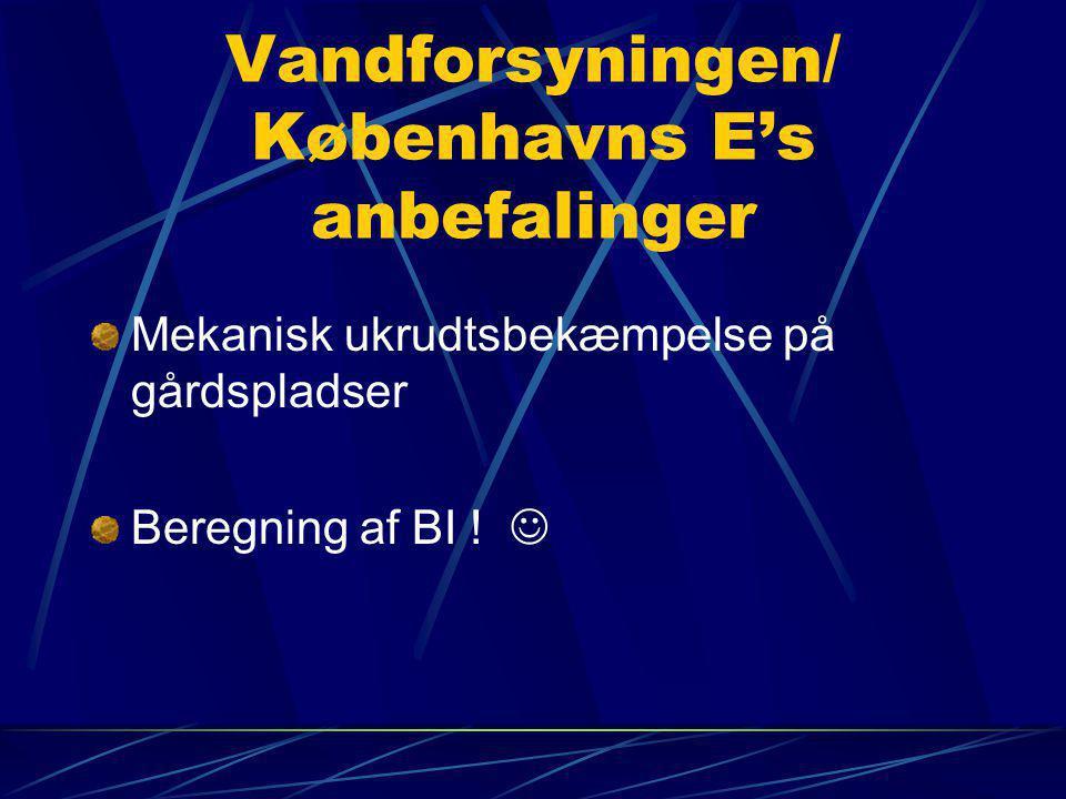 Vandforsyningen/ Københavns E's anbefalinger