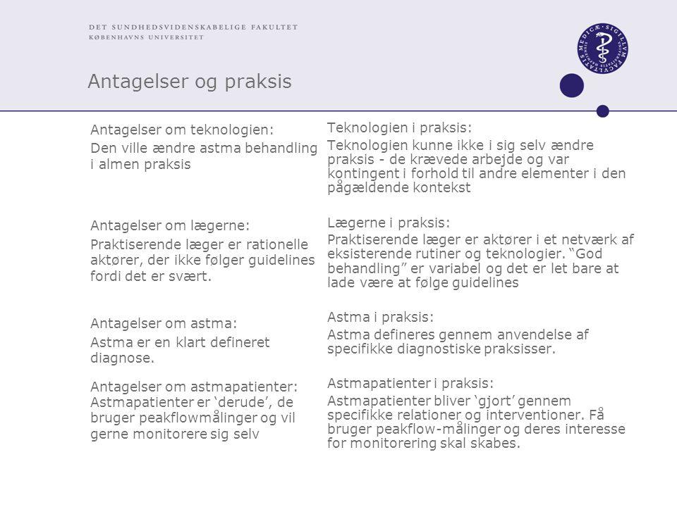 Antagelser og praksis Antagelser om teknologien: