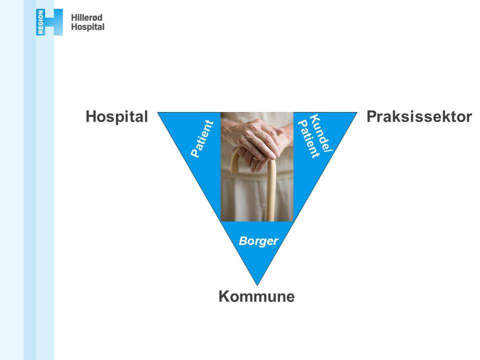Hospital Praksissektor Kommune
