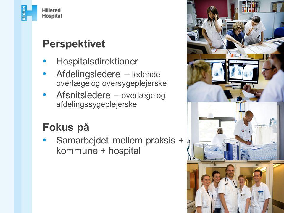 Perspektivet Fokus på Hospitalsdirektioner
