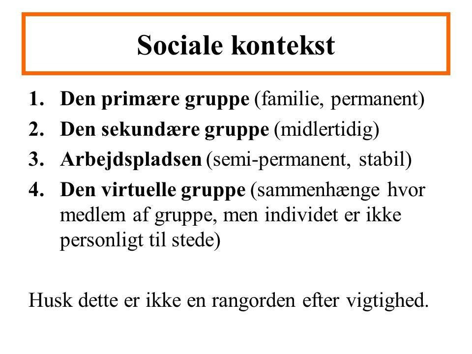 Sociale kontekst Den primære gruppe (familie, permanent)