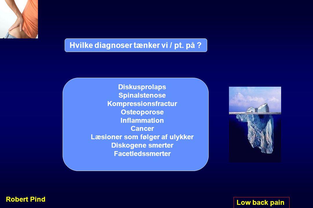 Hvilke diagnoser tænker vi / pt. på Læsioner som følger af ulykker