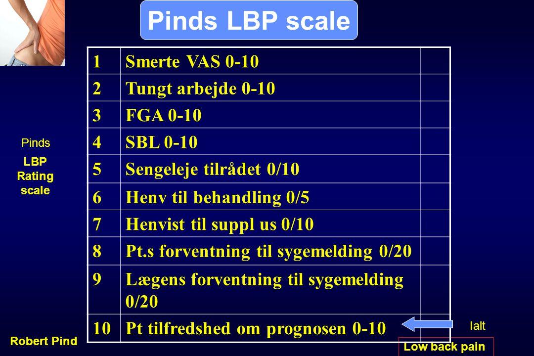 Pinds LBP scale 1 Smerte VAS 0-10 2 Tungt arbejde 0-10 3 FGA 0-10 4