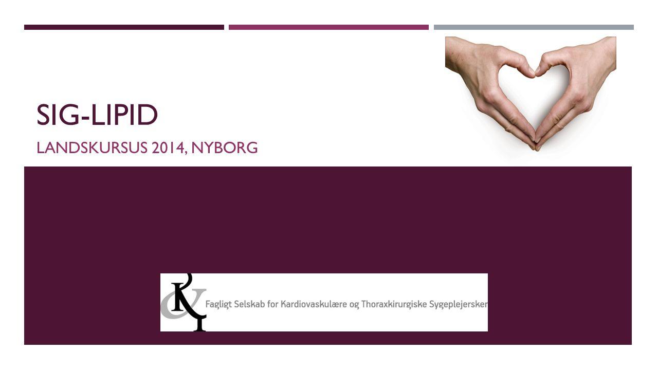 SIG-lipid Landskursus 2014, nyborg