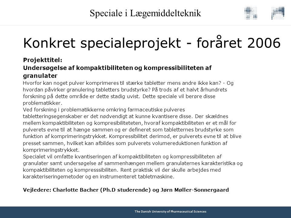Konkret specialeprojekt - foråret 2006