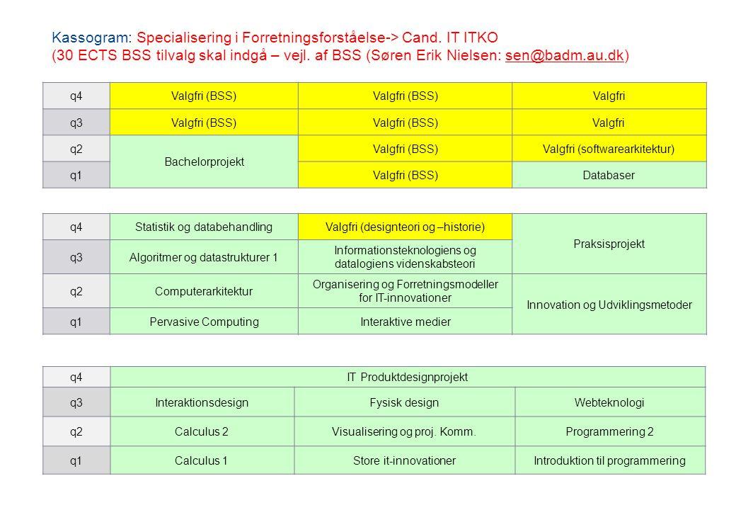 Kassogram: Specialisering i Forretningsforståelse-> Cand. IT ITKO