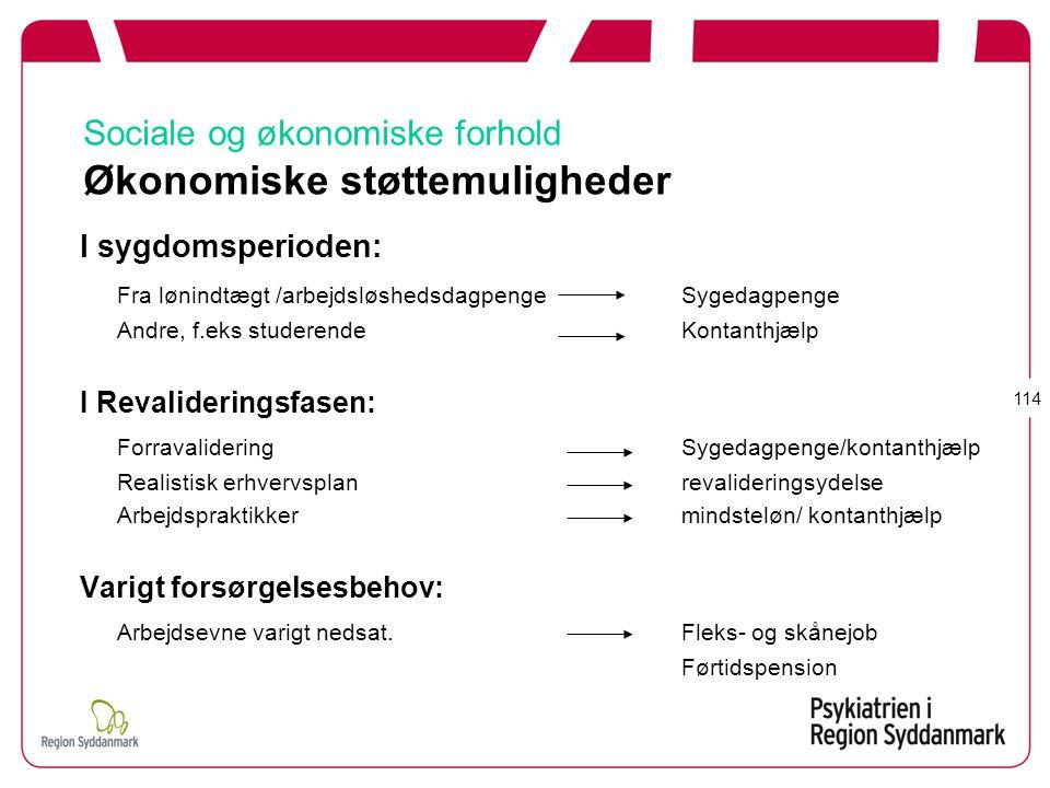 Sociale og økonomiske forhold Økonomiske støttemuligheder