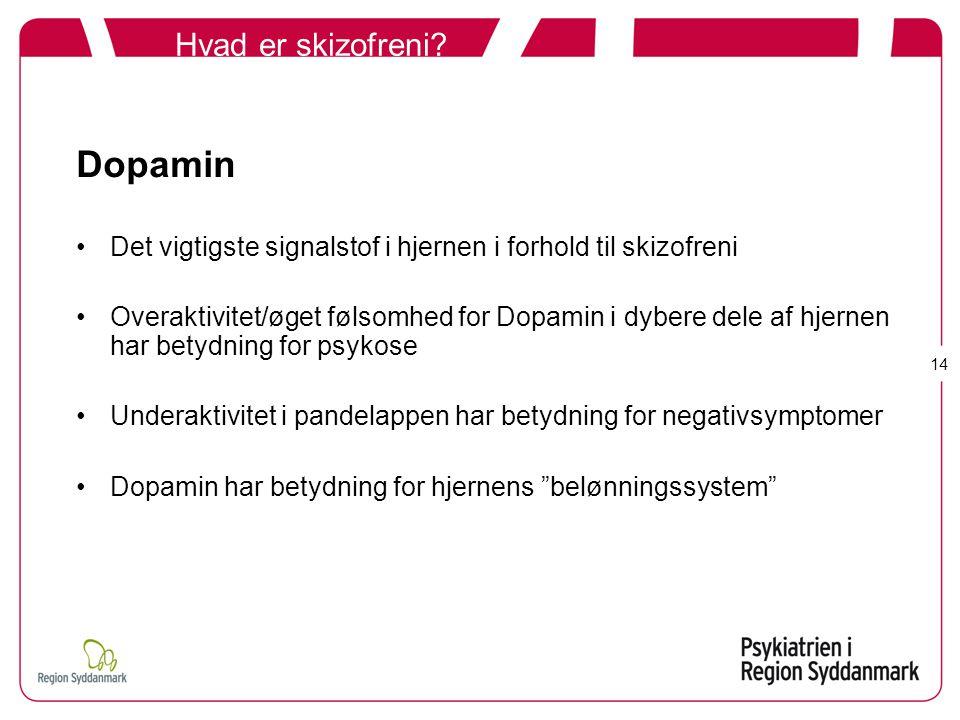 Dopamin Hvad er skizofreni
