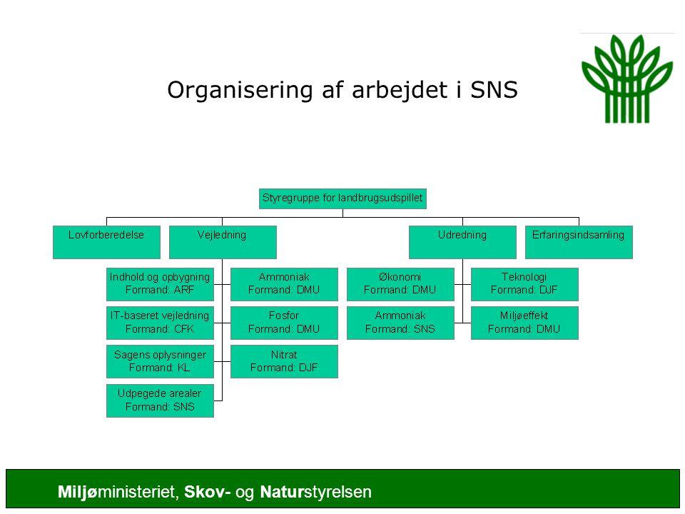 Organisering af arbejdet i SNS