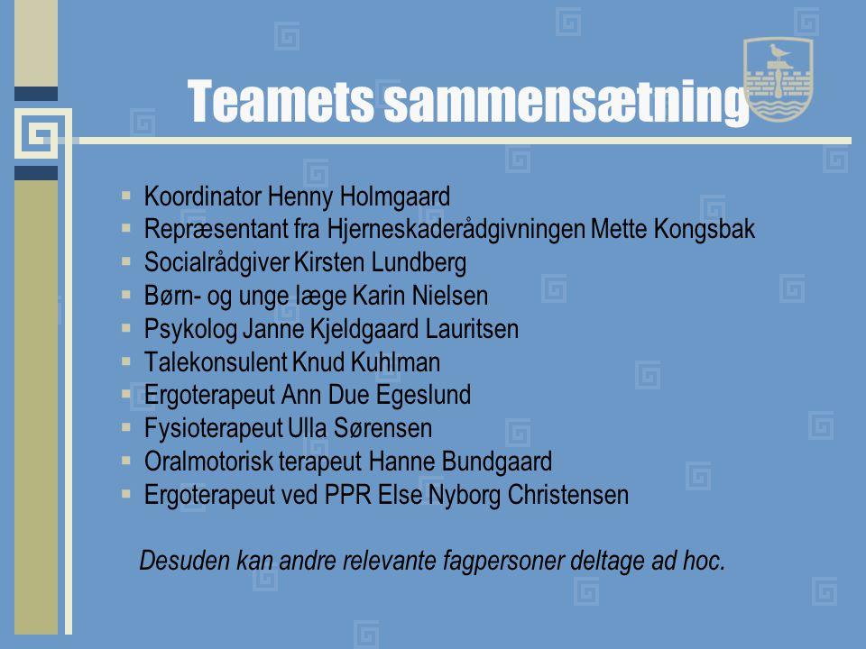 Teamets sammensætning