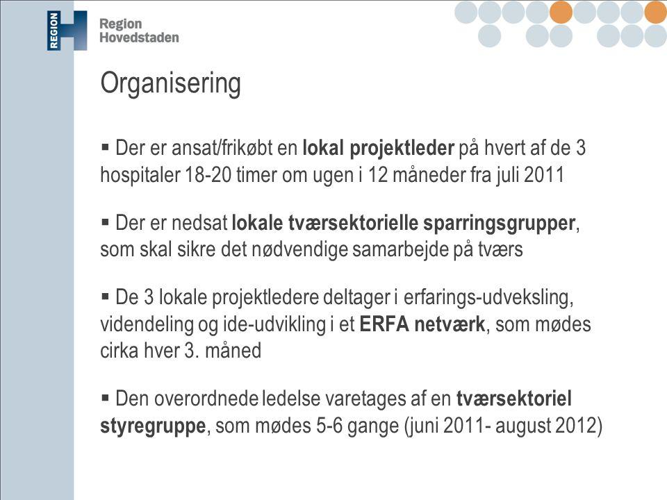 Organisering Der er ansat/frikøbt en lokal projektleder på hvert af de 3 hospitaler 18-20 timer om ugen i 12 måneder fra juli 2011.