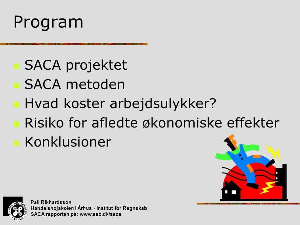 Program SACA projektet SACA metoden Hvad koster arbejdsulykker