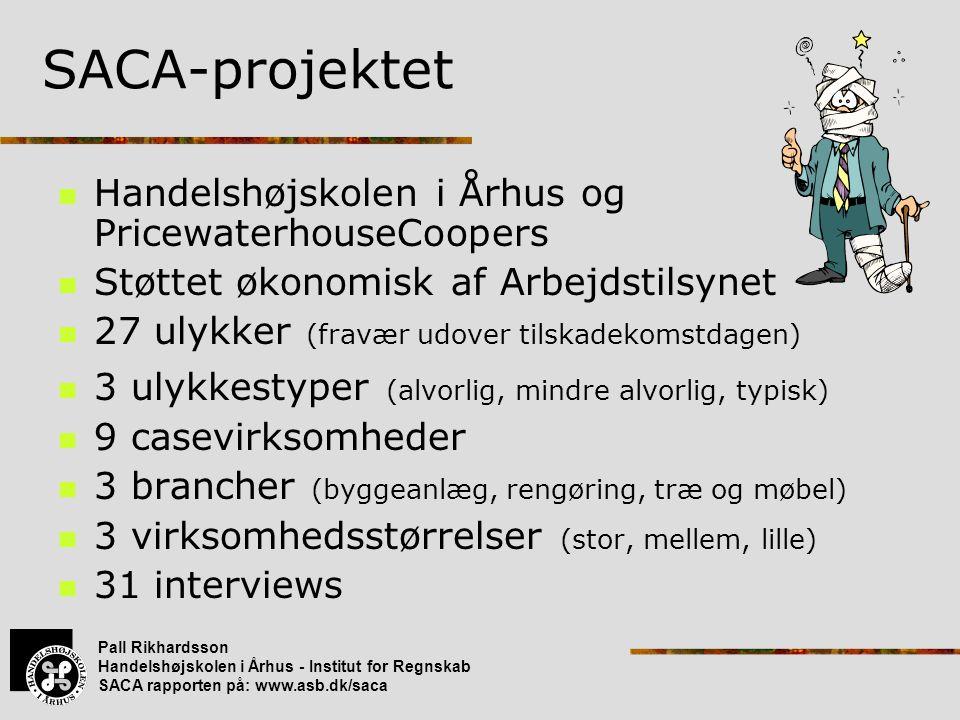 SACA-projektet Handelshøjskolen i Århus og PricewaterhouseCoopers
