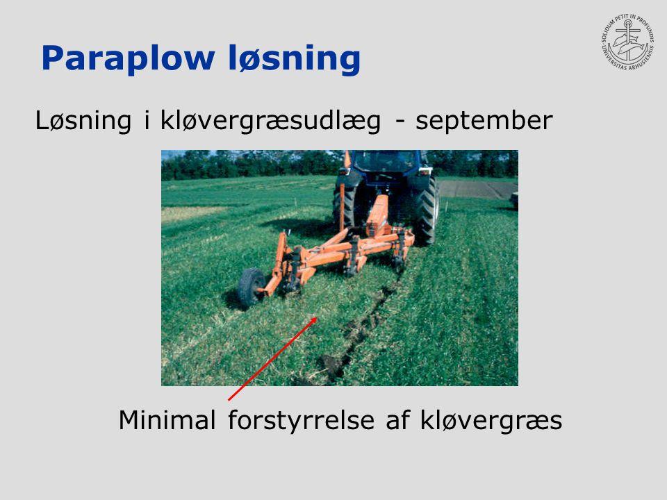 Paraplow løsning Løsning i kløvergræsudlæg - september