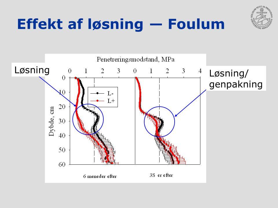 Effekt af løsning — Foulum