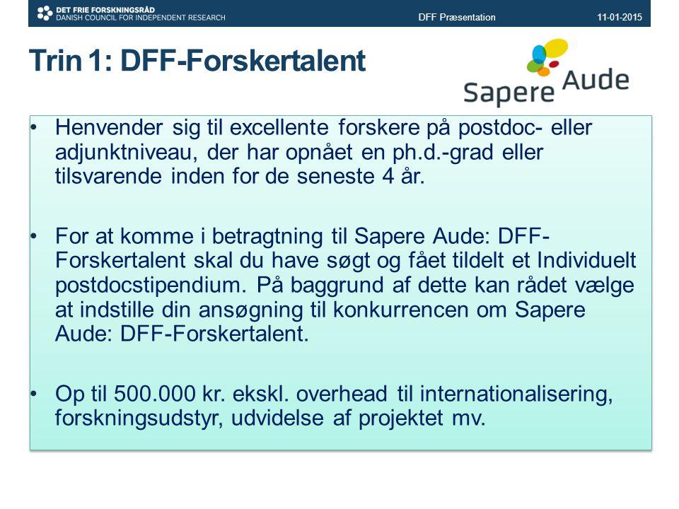 Trin 1: DFF-Forskertalent