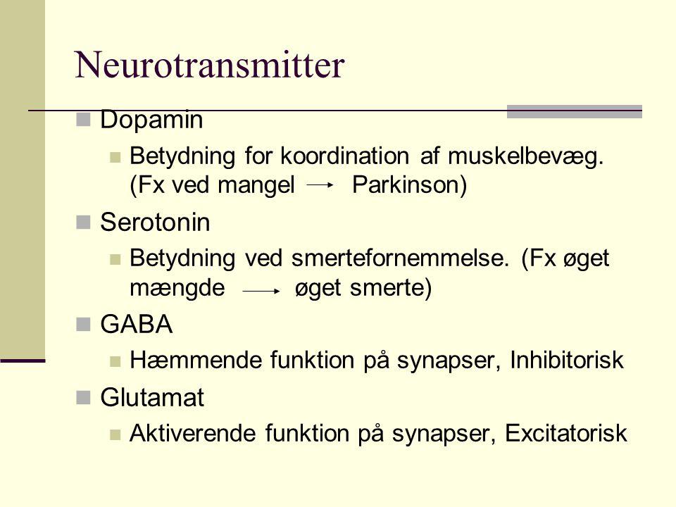Neurotransmitter Dopamin Serotonin GABA Glutamat