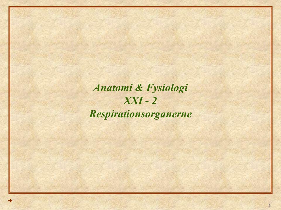 Anatomi & Fysiologi XXI - 2 Respirationsorganerne