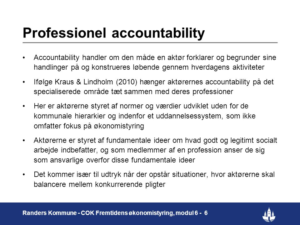 Professionel accountability