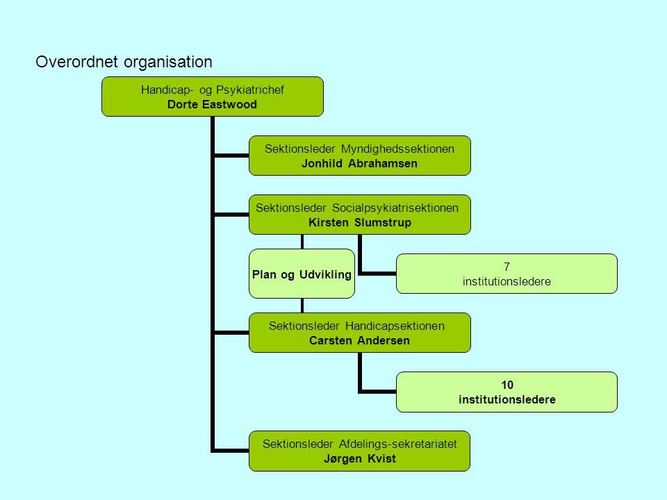 Overordnet organisation