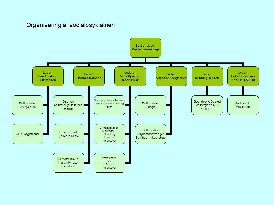 Organisering af socialpsykiatrien