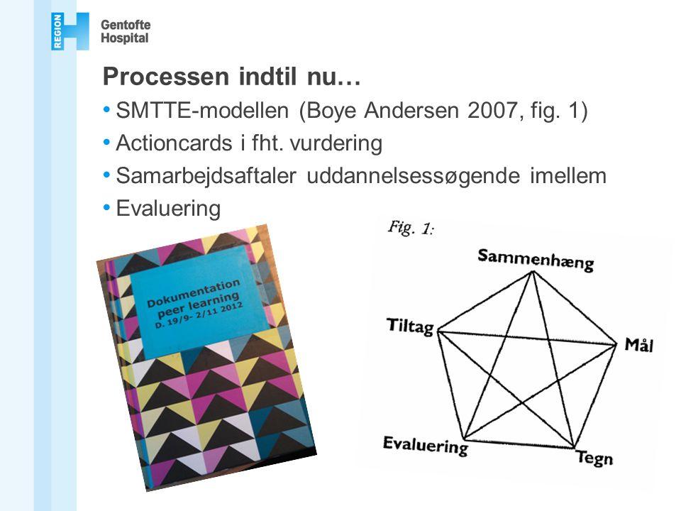 Processen indtil nu… SMTTE-modellen (Boye Andersen 2007, fig. 1)