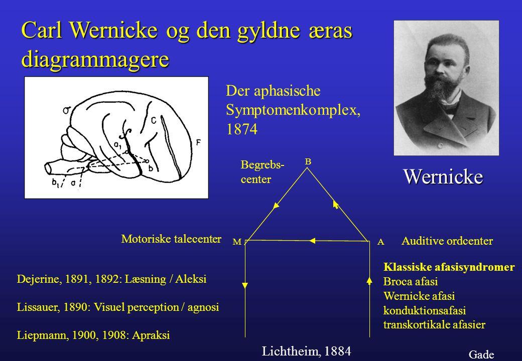 Carl Wernicke og den gyldne æras diagrammagere