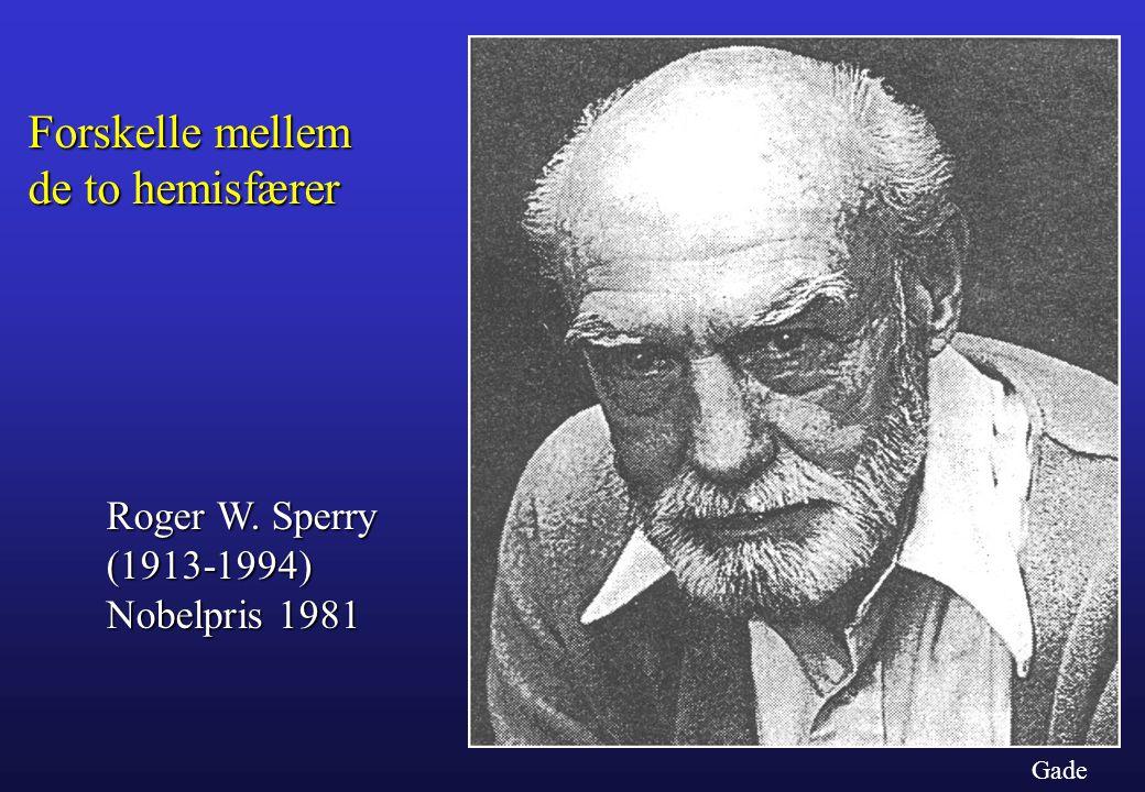 Forskelle mellem de to hemisfærer Roger W. Sperry (1913-1994)