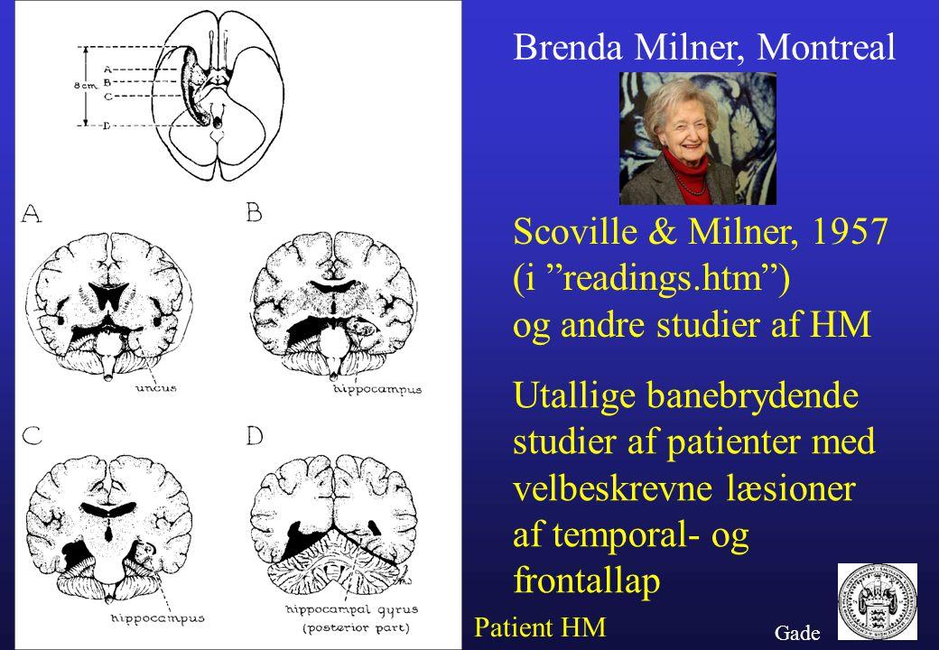Brenda Milner, Montreal