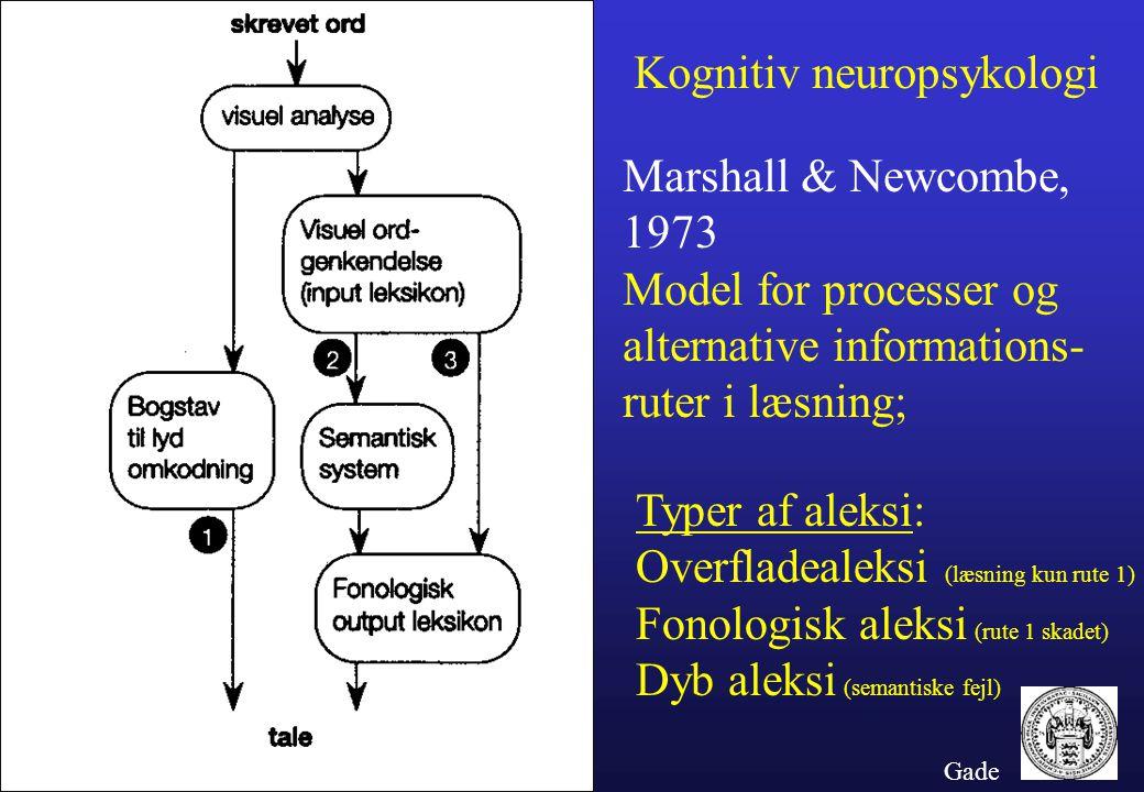 Kognitiv neuropsykologi