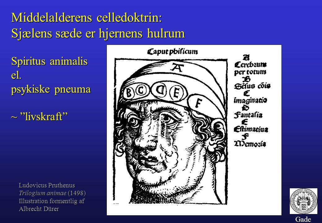Middelalderens celledoktrin: Sjælens sæde er hjernens hulrum