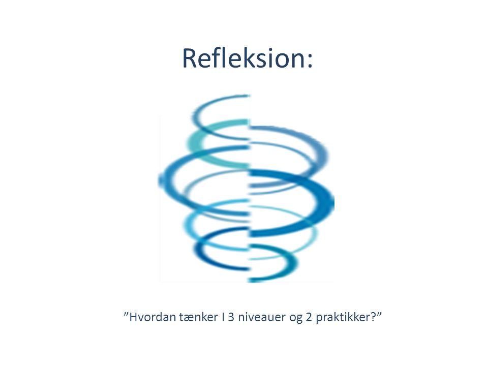 Refleksion: Hvordan tænker I 3 niveauer og 2 praktikker