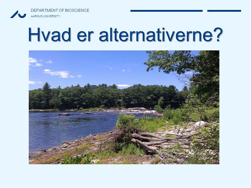 Hvad er alternativerne