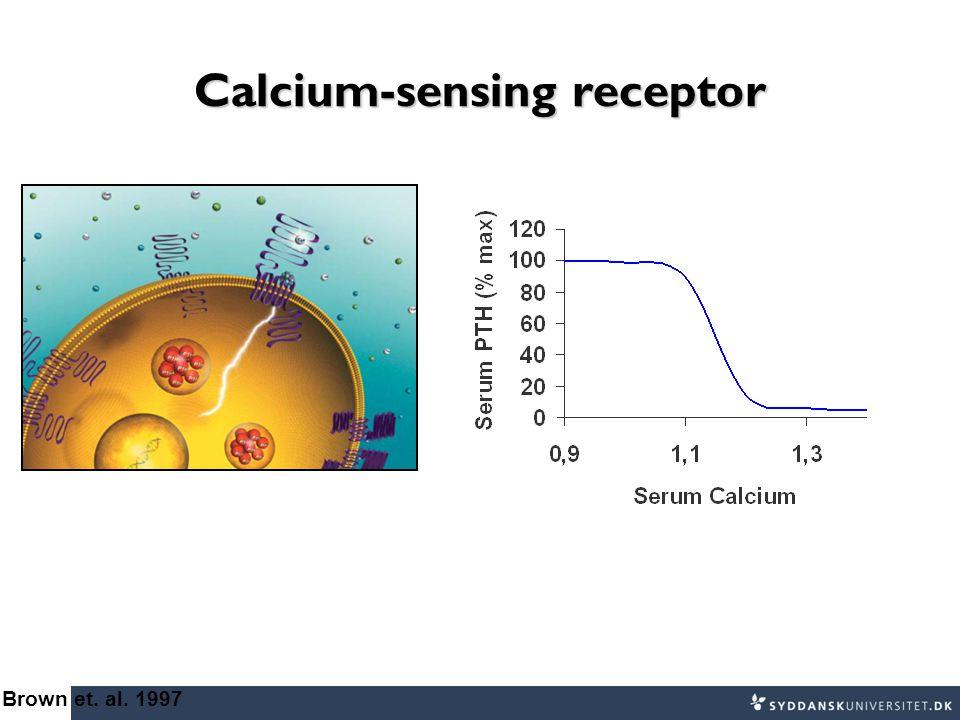 Calcium-sensing receptor