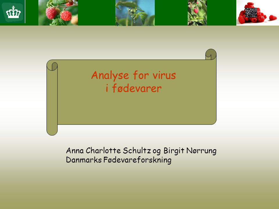 Analyse for virus i fødevarer Anna Charlotte Schultz og Birgit Nørrung