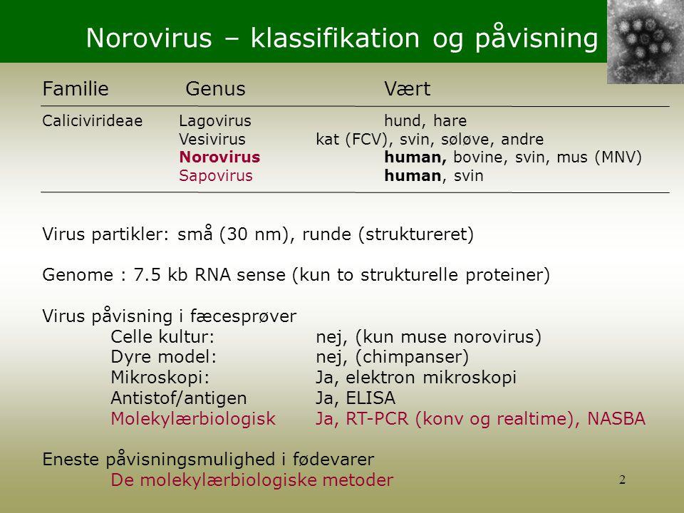 Norovirus – klassifikation og påvisning